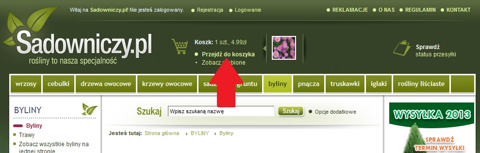 Jak wykorzystać KODY RABATOWE do Sadowniczy.pl ???
