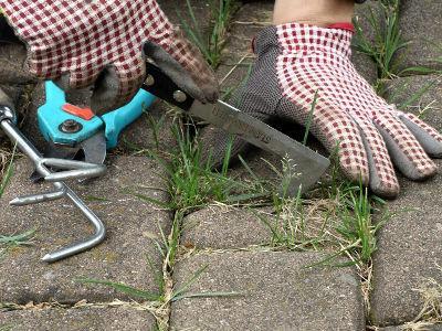 Domowe sposoby na chwasty w kostce brukowej