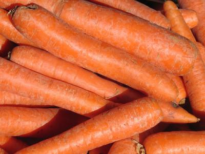 jak przechowywać marchew na zimę