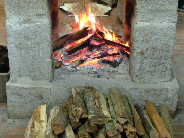 древесная зола как удобрение