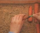 przechowywanie warzyw przez zimę